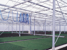 Media- and energy supply for mobile watering car in a greenhouse
